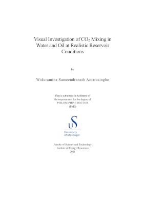 Cover for Visual Investigation of CO2 Mixing in Water and Oil at Realistic Reservoir Conditions